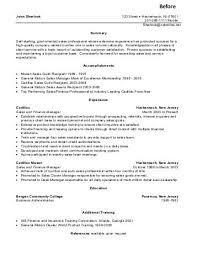 Sales Consultant Resume Sample Elite Resume Writing Enchanting Resume Sales Consultant