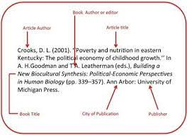 how to write book title in essay apa best apa citation how to write book title in essay apa best 20 apa citation ideas on no signup required com