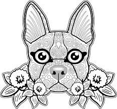 Small Picture Printable 31 Bulldog Coloring Pages 4649 Cute Little American