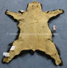 left black bear skin with claws right mounted black bear rug