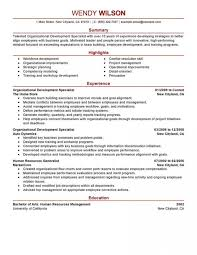 Leadership Resume Examples Enchanting Leadership Resume Templates Stirring Nursing Examples Objectives