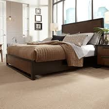 Stainmaster Carpet Color Chart Product Listing