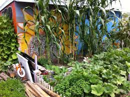 we re delighted that you d like to start a new community garden in your neighborhood