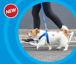 fast fit harness