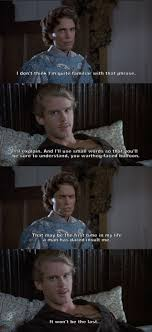 best ideas about prince film film movies and and i ll use small words so that you ll be sure to understand the princess bride yehhh defend yo mate booooyyyee lol