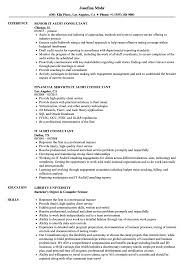 It Audit Consultant Resume Samples Velvet Jobs