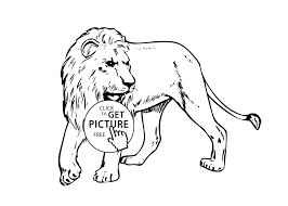 Small Picture real animals coloring pages for kids printable free