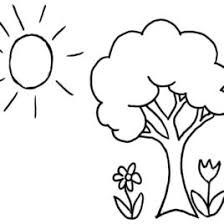Coloring Pages Trees Plants And Flowers Archives Red Poder