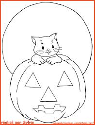 Petit Chat Pour Halloween Colorier Centerblog