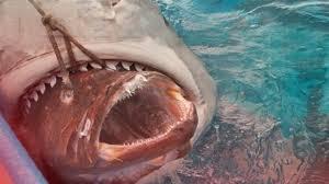 megalodon shark. Wonderful Shark Megalodon Shark Caught On Tape  Fishermen Baiting Sharks Discover The  Monster Sized Up Close YouTube And O