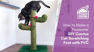 diy cat scratch post cactus