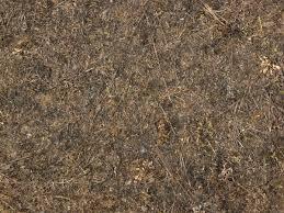 dark dirt texture seamless. Ground Texture Containing Dry Twigs And Grass Among Dark, Arid Dirt. Dark Dirt Seamless
