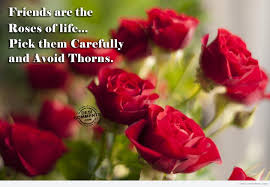 Beautiful Roses With Friendship Quotes Best of Friends Are The Roses Of Life DesiComments
