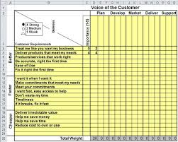 Voice of the Customer Matrix in Excel | VOC