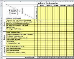 Voice of the Customer Matrix in Excel | VOC