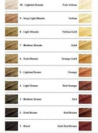 Well Hair Color Chart How To Bleach Hair How To Lighten Hair Bleached Hair