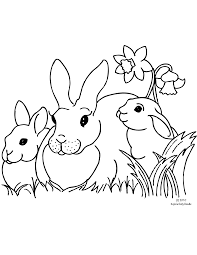 Bunny Tale Coloring Page Bunny Rabbit