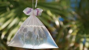 Use Plastic Water Bags to K