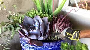 Full Shade Succulent Arrangement
