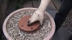diy flower pot tandoori