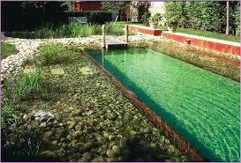 diy natural swimming pool swimming pool ideas diy natural swimming pool australia