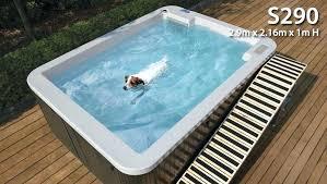 pool ramp for dog dog pool pool ramp dog