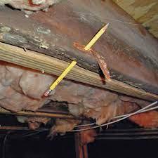 repair wood damage in ontario repair