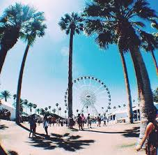 palm trees tumblr vertical. Palm Trees, Ferris Wheel And Sunshine! Perfect. Trees Tumblr Vertical