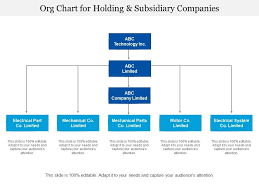 Org Chart For Holding And Subsidiary Companies Powerpoint