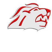 und noch ein Logo – ZSC-Lions | wobmann