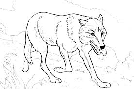 Wolf Coloring Pages To Print Wolf Coloring Pages Printable Print