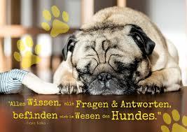 Das Wesen Des Hundes Sprüche Zitate Echte Postkarten Online