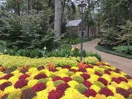 fall garden flowers. Chicago Landscape Spring Garden Designs Fall Flowers 2