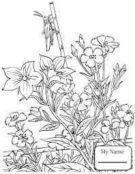 insect coloring pages preschool of insects photos page pictures to color jungle free insect coloring pages preschool