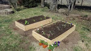 cedar 3x6 garden bed raised vegetable