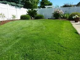 Резултат с изображение за външни зелени площи снимки