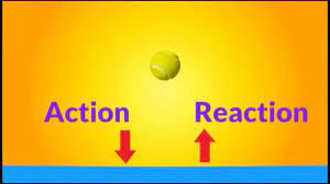 newton s 3rd law of motion you