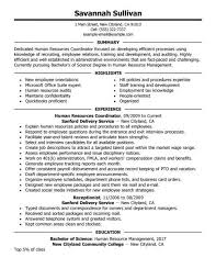 sample hr generalist resume objective human resources resume hr resume sample for experienced hr executive hr generalist resume examples