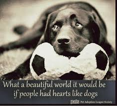 Quotes About Pets And Friendship Interesting What A Beautiful World It Would Be If People Had Hearts Like Dogs
