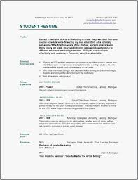 Resume Examples 2016 Adorable Michigan Resume Builder Templates 60 Best Free Resume Builder 60
