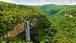 amazon rainforest. Simple Rainforest Dramatic Waterfall In Amazon Rainforest U201c And Rainforest S
