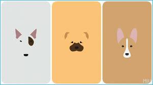 Cartoon Cute Animal Iphone Wallpaper ...