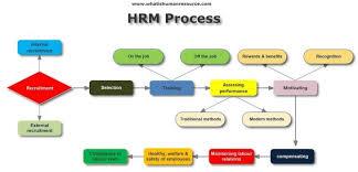 Hr Functions Flow Chart Bedowntowndaytona Com