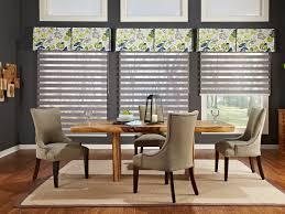Modern Window Attractive Blinds Living Room Black Vinyl Of ...