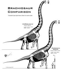 brachiosaurus size brachiosaur comparison by paleo king on deviantart
