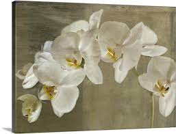 painted orchid canvas on orchid canvas wall art with painted orchid wall art canvas prints framed prints wall peels
