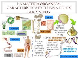 bloque 2 identifica las características y componentes de los seres vivos -  Biologia1GSM