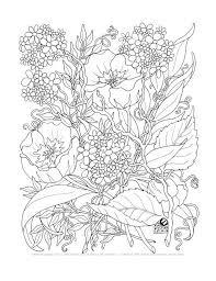 Malvorlage audi quattro kostenlos : Ausmalbilder Erwachsene Blumen Kostenlos Rssmix Info