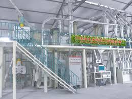 Flour Milling Plant Design All Information About Maize Corn Flour Mill Plant Design