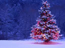 Lone Christmas Tree Wallpaper - High ...